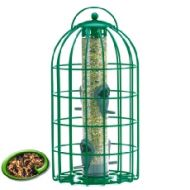 Squirrel & Predator Proof Original Seed Feeder Green