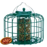 Nuttery Squirrel & Predator Proof Mini Nut Feeder Green