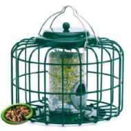 Nuttery Squirrel & Predator Proof Mini Seed Feeder Green