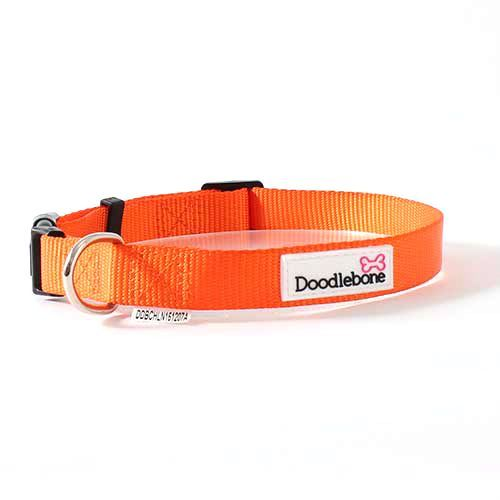 Doodlebone Collar Small Orange