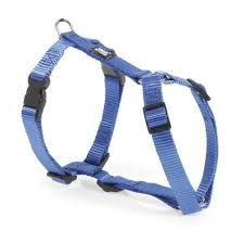 Ancol Nylon Harness Blue Extra Large