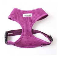 Doodlebone Harness Large purple