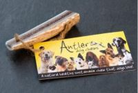Antler Easy Chew Small
