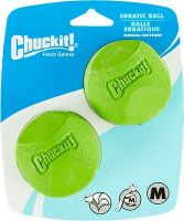 CHUCKIT ERRATIC BALL MEDIUM 2 PACK
