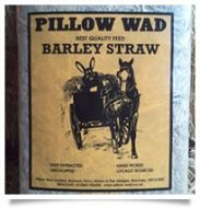 Pillowwad Barley Straw